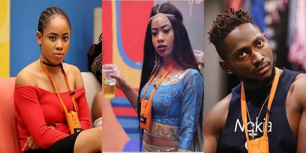 #BBNaija: Nina's Family React To Her Dramatic Romance With Miracle, release public statements