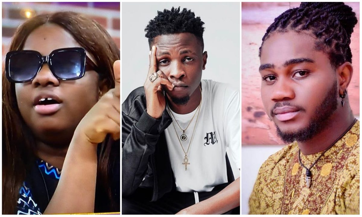 #BBNaija: Laycon is the most brilliant housemate – Praise (Video)
