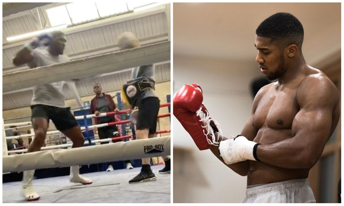 Anthony Joshua shares training clip as he gear up for his next fight against Kubrat Pulev (Video)